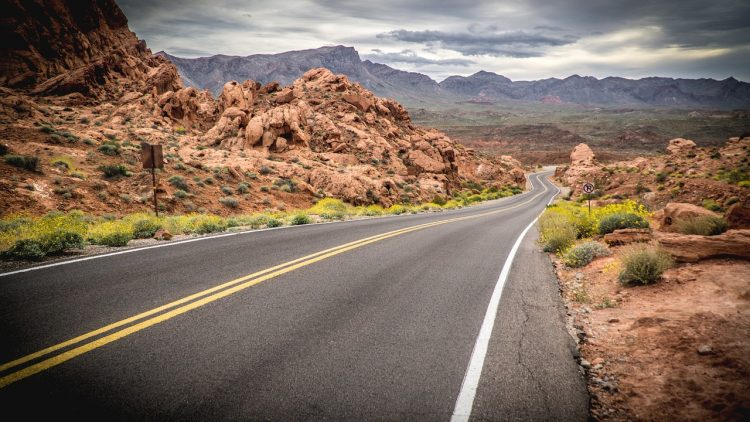 The valley of fire offers different opportunities to see jackrabbits, foxes, coyotes, and bighorn sheep, along with different varieties of migratory and resident birds.
