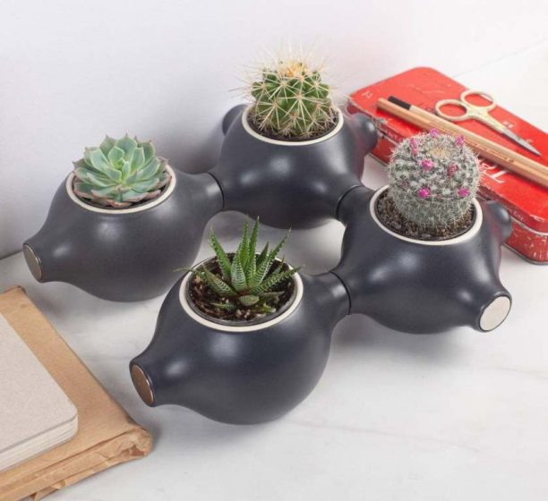 First and foremost a modular garden, Magnapot can also serve as a stand for all sorts of clutter.